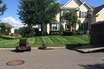 Weekly Lawn Maintenance